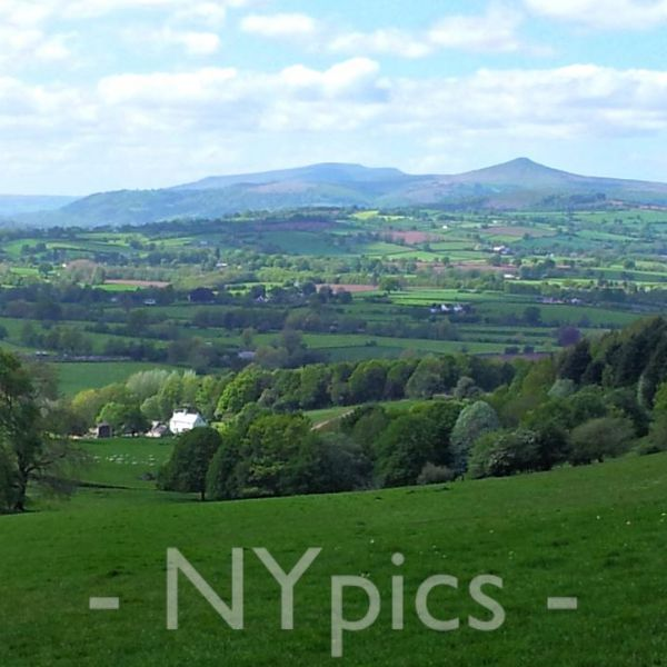 The Sugarloaf Viewed From Coed y Bwnydd