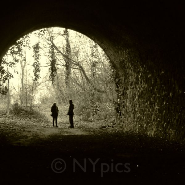 Old Disused Railway Tunnel, Usk