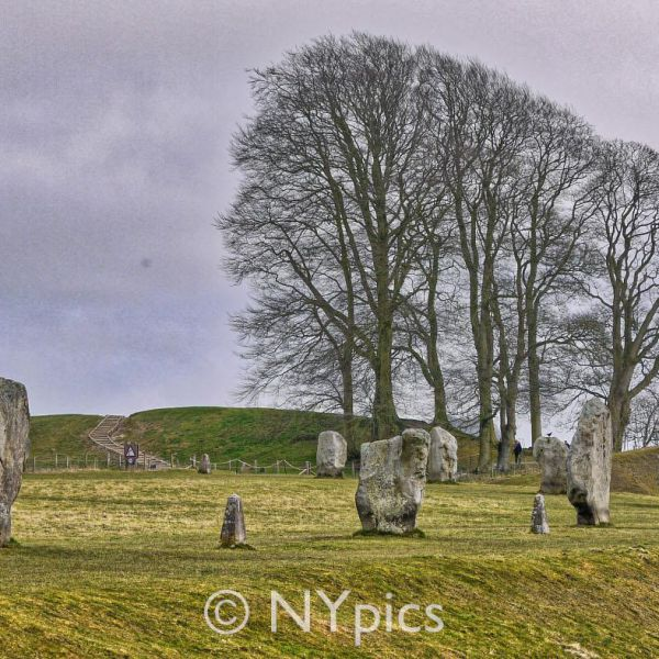 The South West Sector Avebury