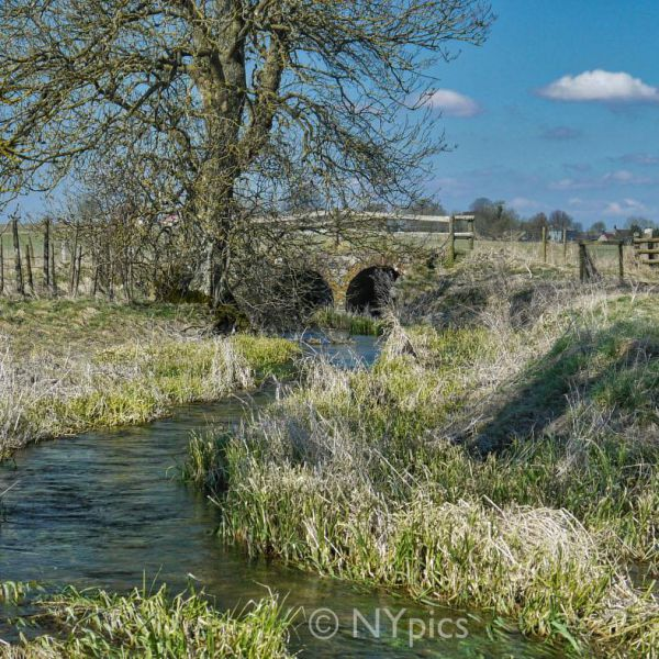 The River Kennet, Avebury