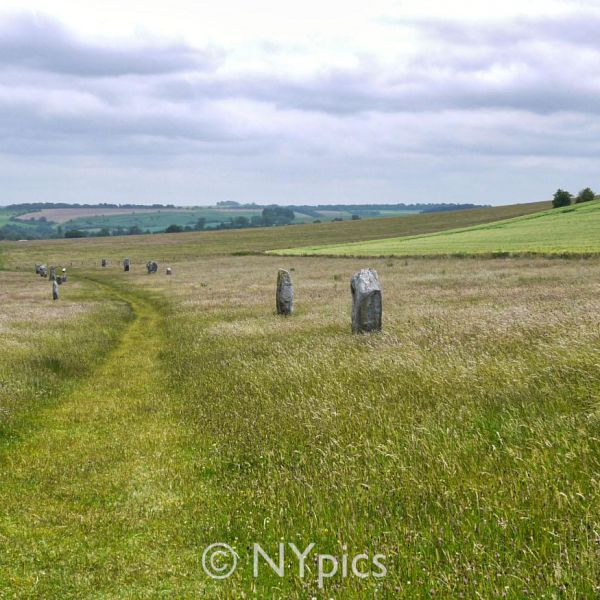 Part Of The West Kennet Avenue, Avebury
