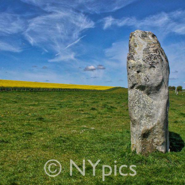 Standing Stones, West Kennet Avenue, Avebury