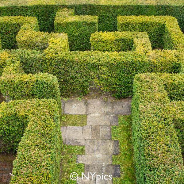 Hampton Court Castle (Herefordshire) Maze