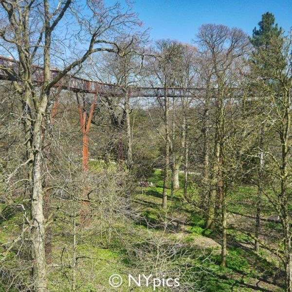 Tree Top Walkway, Kew Gardens