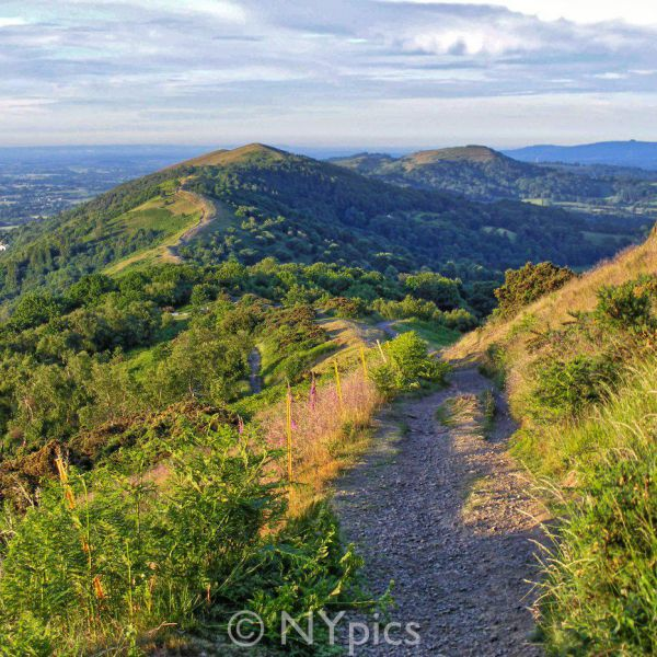 The Malvern Hills Shortly After Sunrise