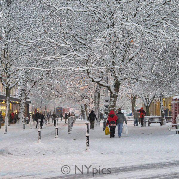 Christmas In Cheltenham