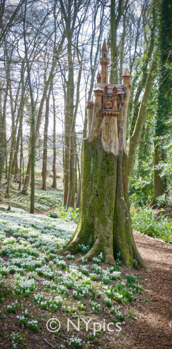 Tree Sculpture At Painswick Rococo Garden