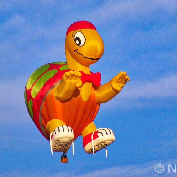 Hot Air Balloon, Bristol