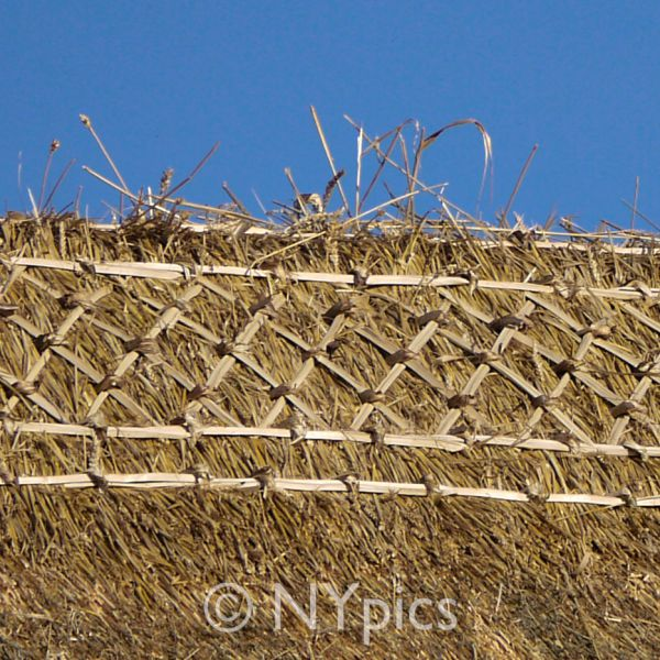 Fresh Ridging Work On A Thatched Roof
