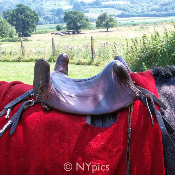 Saddle Used By Roman Cavalry